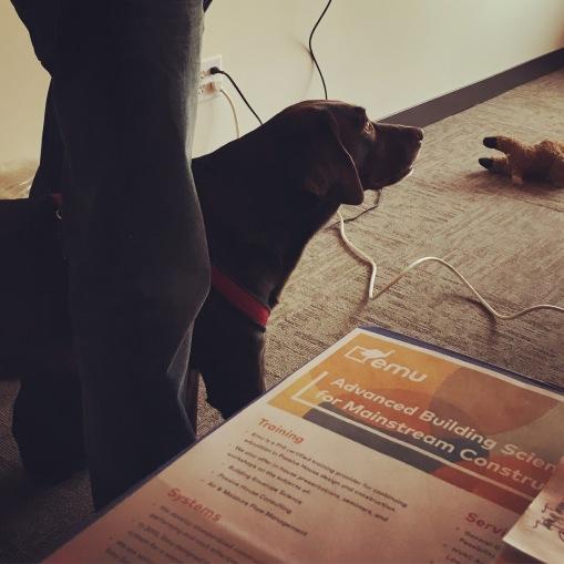 Saba, helping to teach the CPHT course.